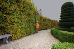 Amélie - Castello di Guarene Jardins à l'italienne