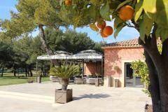 hotel-du-castellet-terrasse-orangers