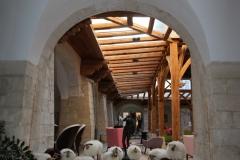 couvent-des-minimes-cloitre-moutons