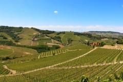 Vignoble Pira - parcelles Marenca Margheria Barolo Serralunga