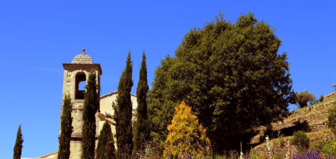 Haute Provence, Luberon, Forcalquier, Mane, Couvent des Minimes, restanque fleurie